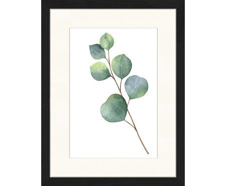 Ingelijste digitale print Eucalyptus II