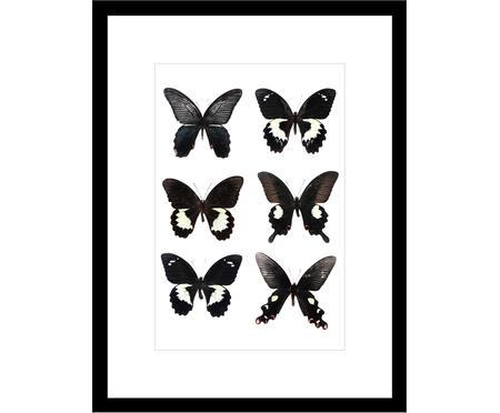 Ingelijste digitale print Butterflies Dark